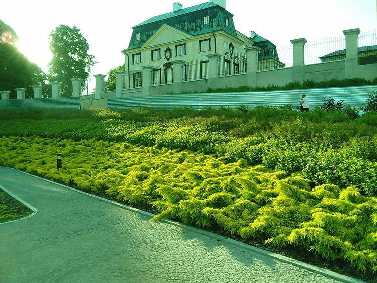 Building Exterior Architecture Built Structure Grass Green Color Clear Sky Day Outdoors Sky Growth Façade No People Rzeszowzaprasza Rzeszów Poland Rzeszów Arturhippe Polishpriest Pokojartura City