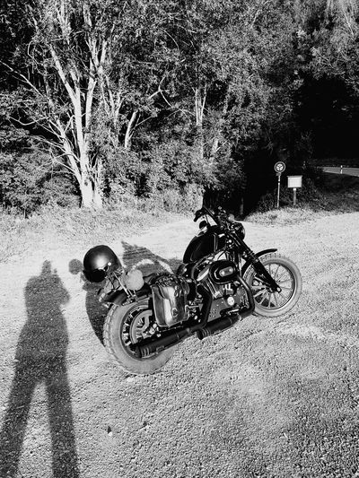 On the road Motorcycle Mountain Outdoors Blackandwhite