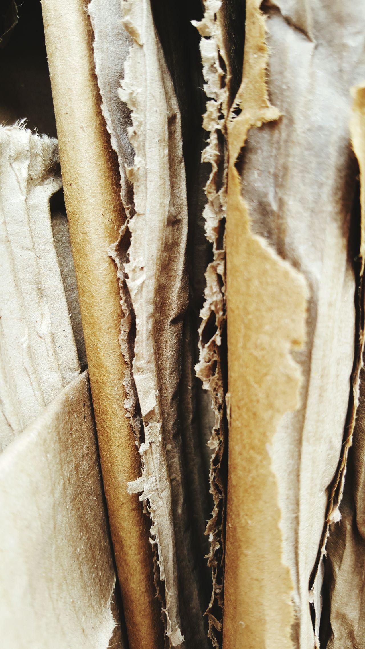 Pollution Human Creation Pappe Paper Papier Pappe Verpackung Verpackung Verpackungsmaterial Verpackungswahnsinn