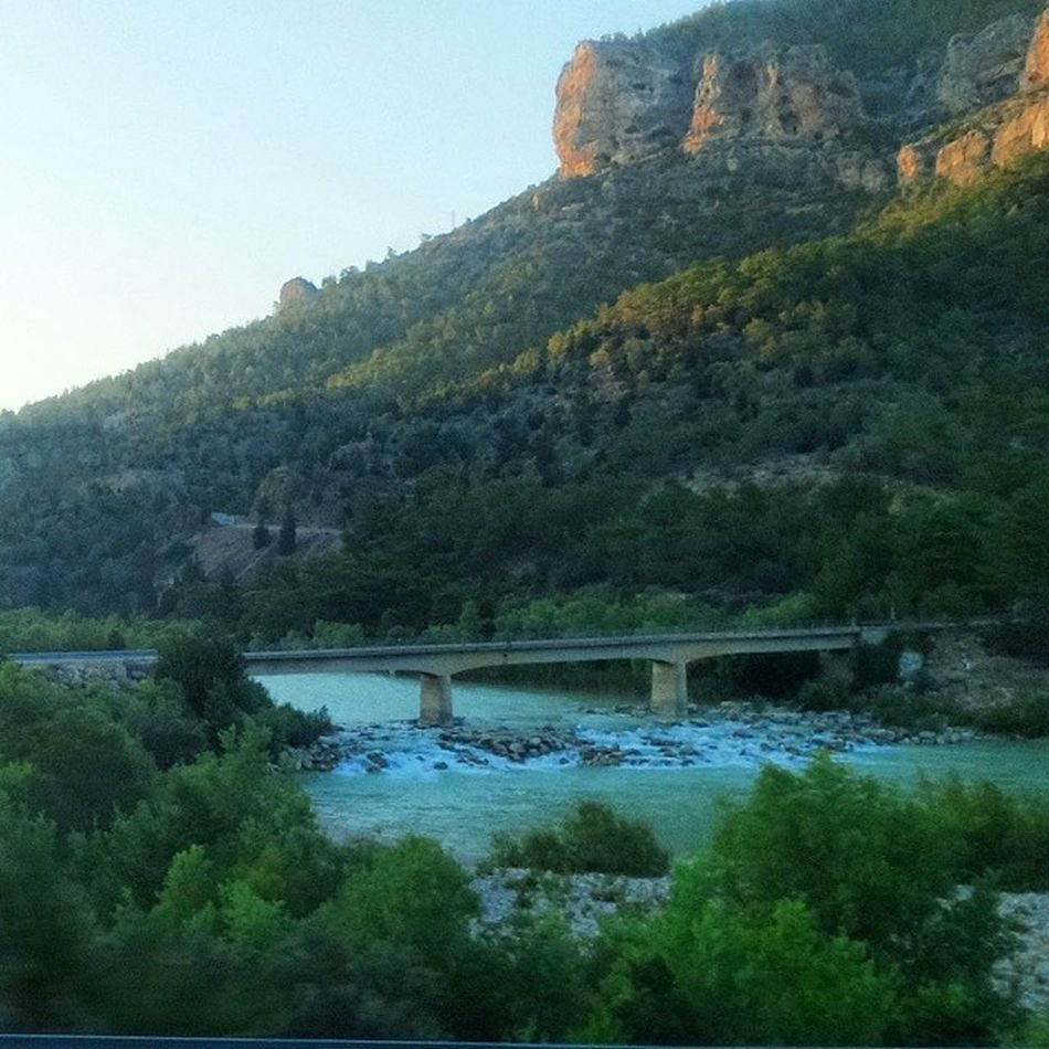 Goksu Nehir Agac Kopru
