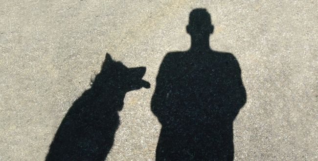 Walkies in the sun... Black Color Day Dog Focus On Shadow Gravel Road Ground Leisure Activity Lifestyles Man And Dog Mid Day Sun And Clouds Outdoors Outline Shadow Silhouette Sunlight Sunny