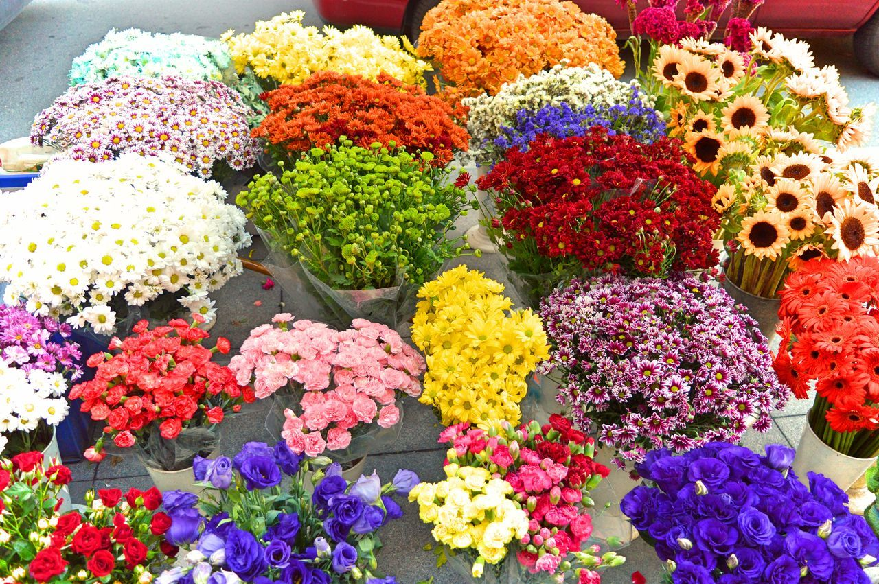 flower, multi colored, variation, freshness, fragility, arrangement, choice, for sale, no people, retail, flower market, flower shop, large group of objects, day, market, bouquet, beauty in nature, indoors, flower head, nature, close-up