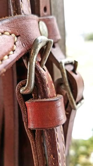 Hanging Focus On Foreground Close-up Still Life No People 3XSPUnity 3XSPhotographyUnity Horses Leather Bridle Buckles Tack Horse Equestrian Minimalism