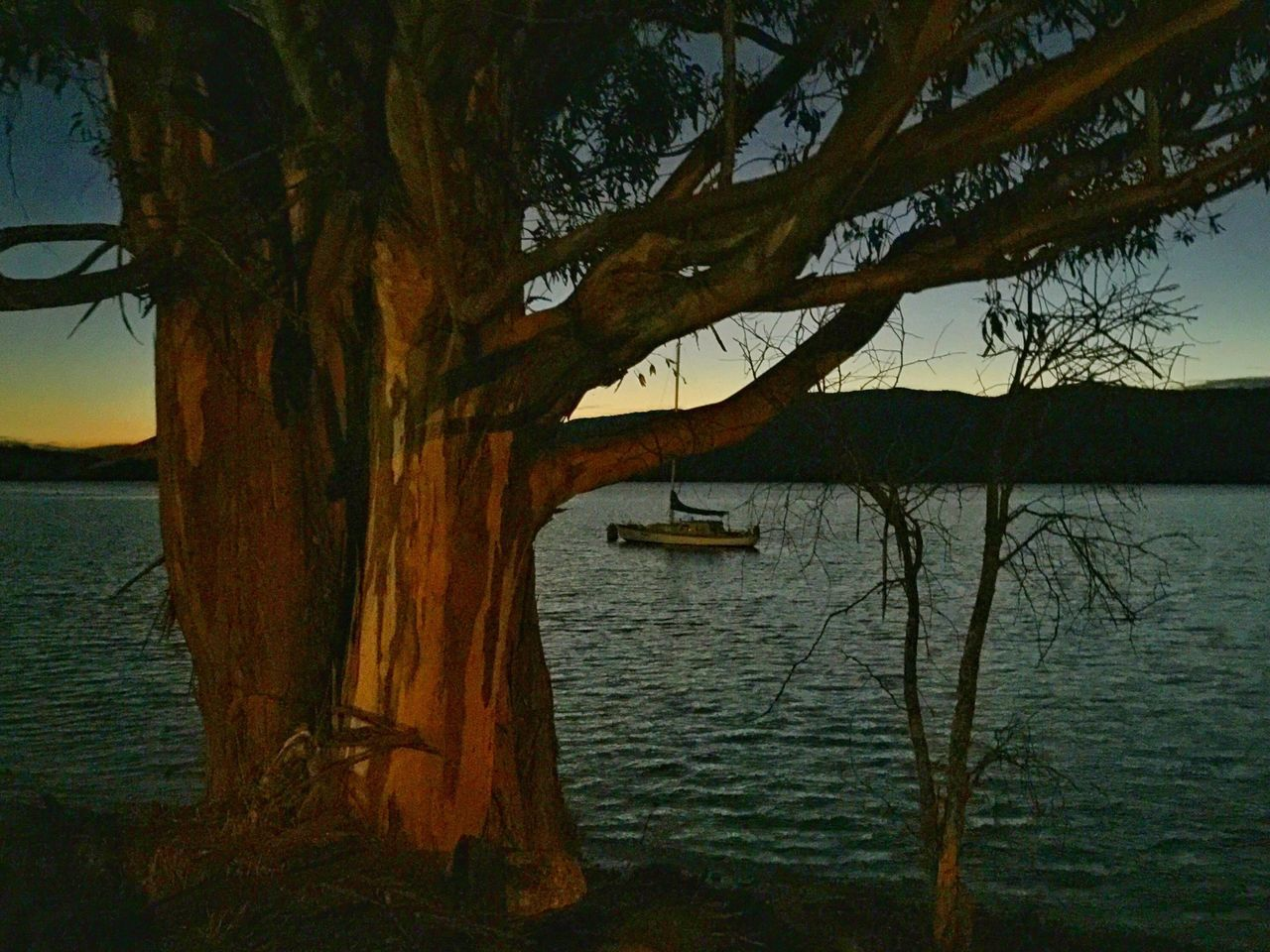 Showcase: February Lake Te Anau at sunset. TeAnau Sunset Newzealand