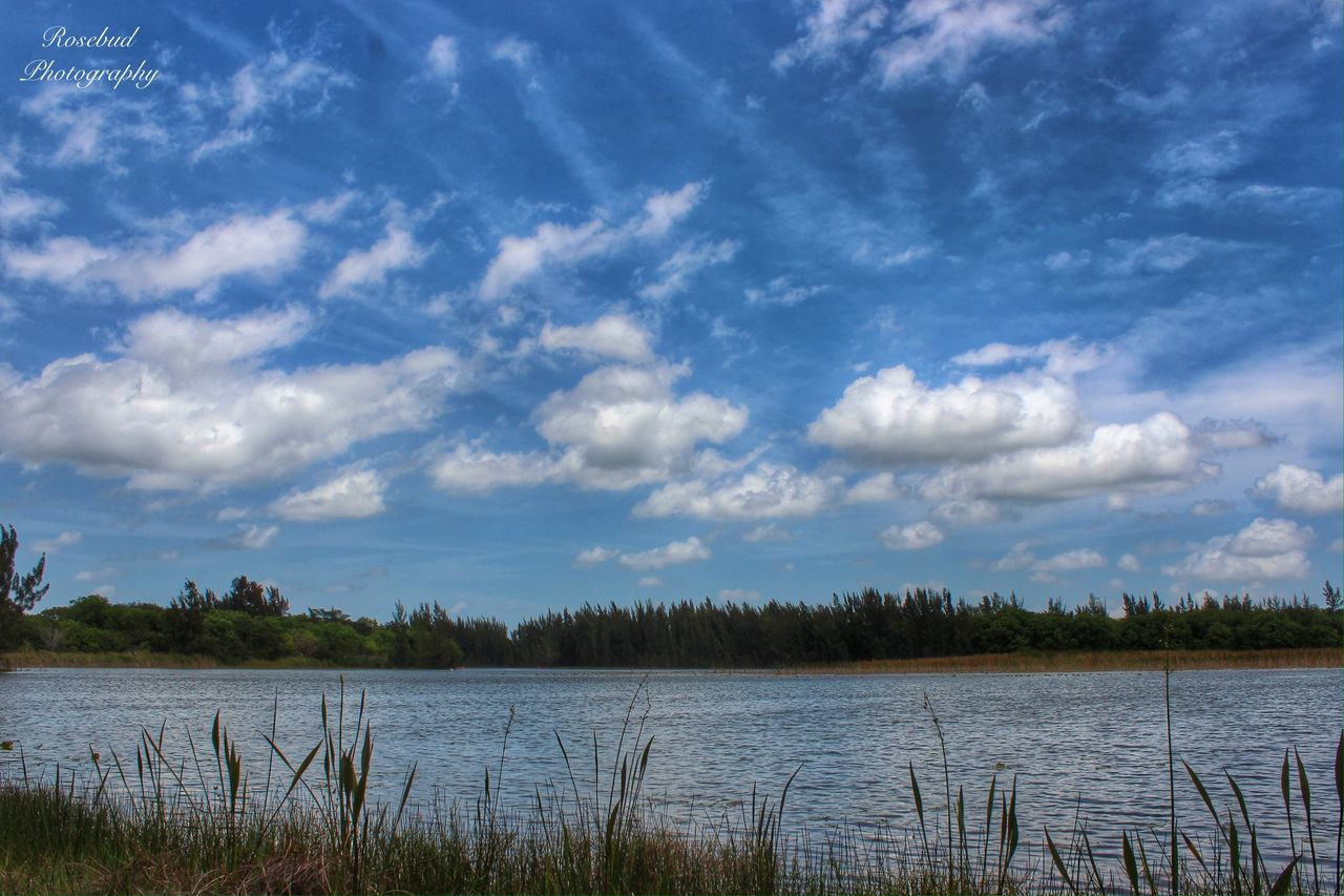 tranquility, nature, lake, beauty in nature, tranquil scene, scenics, sky, cloud - sky, water, no people, day, outdoors, tree, grass, landscape, growth