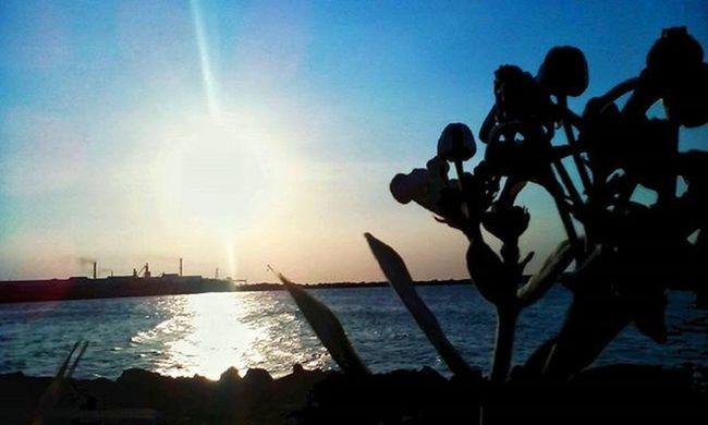 Good evening guys, enjoying your life. Nicepicture Sunset Natgeotravel Beachlife Nature Pesonaindonesia Wonderfulindonesia Folkmagazine Hot_shotz