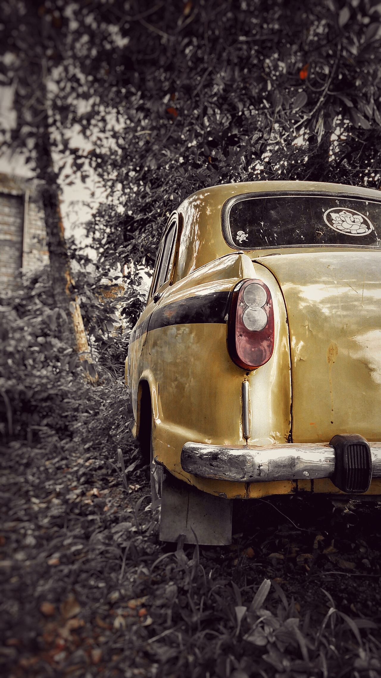 Car Transportation Abandoned Land Vehicle Outdoors Old-fashioned No People Day Close-up Photography Photo Of The Day Wallpaper 4K HDR IPhone Vintage Blackandwhite Old Car India Taxi Cab Kolkata Photo Graphy Photo Yellow Lieblingsteil Miles Away EyeEmNewHere The City Light Live For The Story