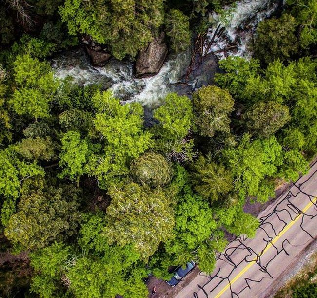 """Memorialday """"The clearest way into the Universe is through a forest wilderness."""" ~John Muir Off to get some more time up in the trees this weekend. Memorialdayweekend Tgif Dronestagram Dronelife Forestlife Americanforkcanyon Utah Visitutahvalley"""