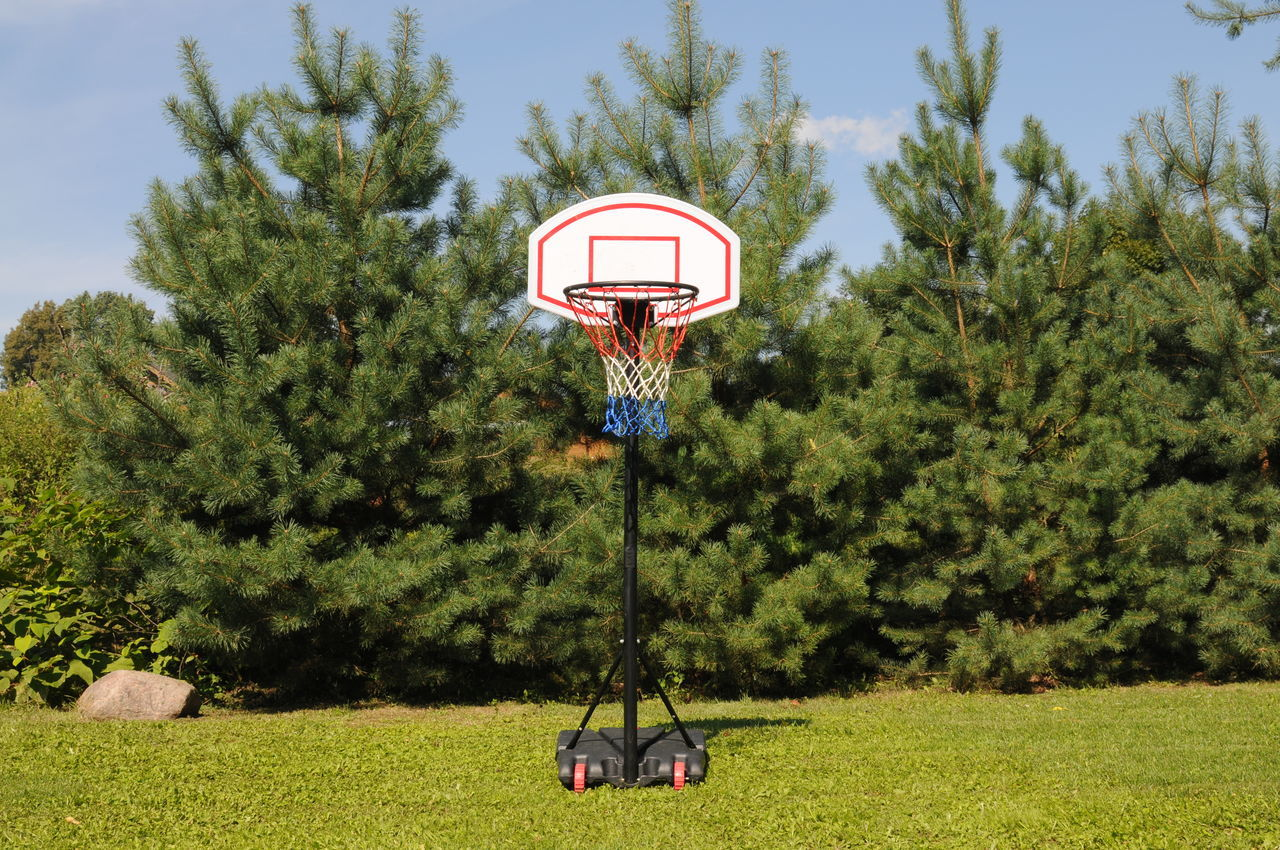 Home basketball court on the green grass Basket Basketball Beauty In Nature Court Courtyard  Day Grass Grassy Green Green Color Green Court Growth Landscape Lush Foliage Nature Nature Net No People Outdoors Pinetrees Plant Sky Tranquil Scene Tranquility Tree