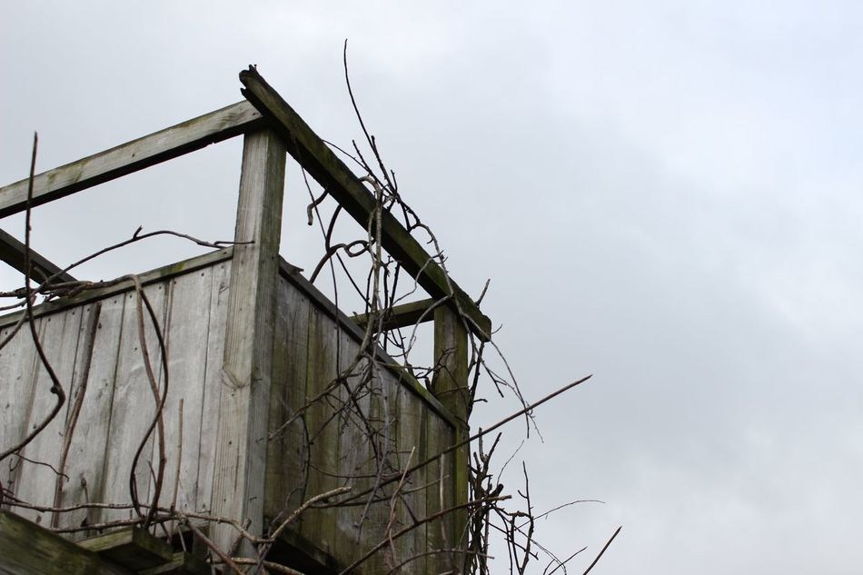 Childhood Low Angle View No People Outdoors Playing Outdoors Rustic Rustic_wonders Sky Treehouse Wood - Material