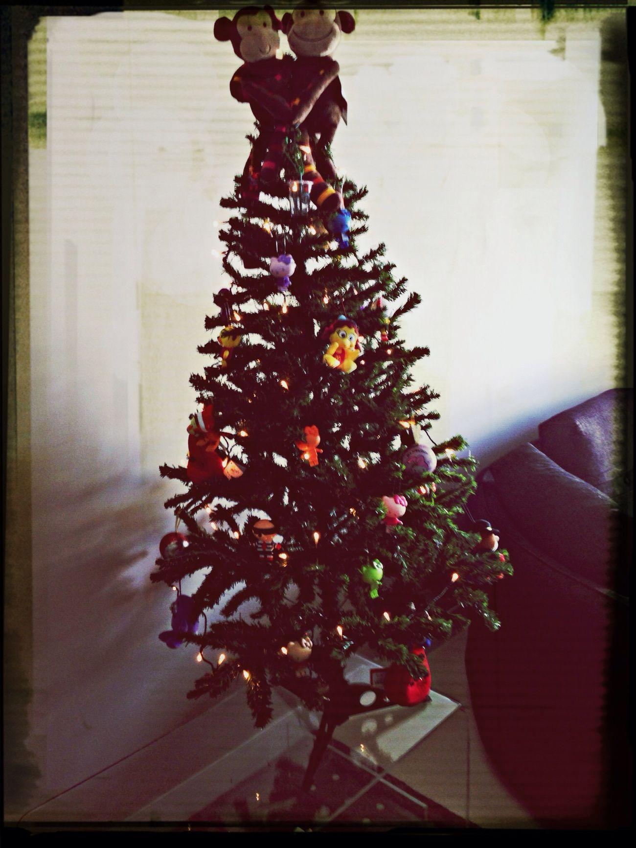 Finally got the tree up....