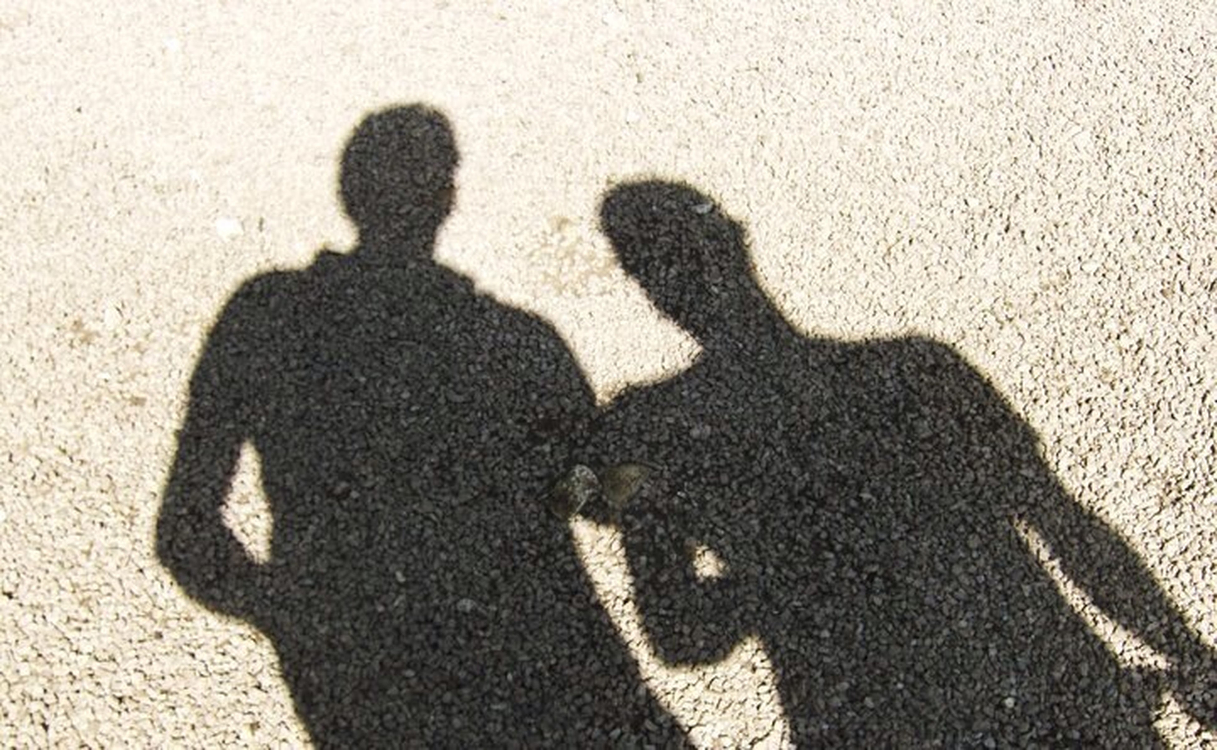 shadow, focus on shadow, high angle view, sunlight, lifestyles, togetherness, leisure activity, men, bonding, sand, love, outdoors, day, unrecognizable person, outline, silhouette, sunny