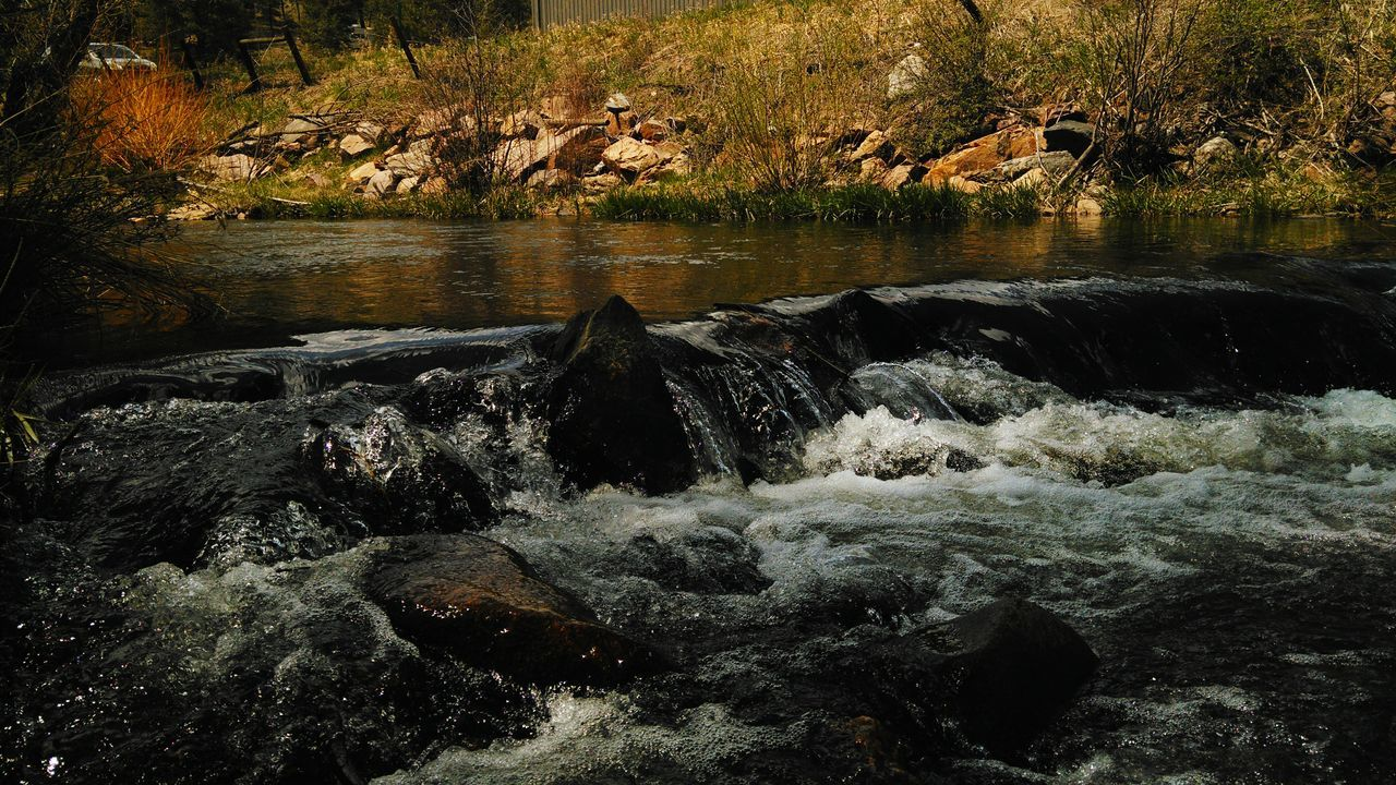 Riverside Photography River Riverside River View Colorado Photography Lifestyles Scenics No People Forest Nature Naturelovers Waterfall Water Landscape_Collection Ripples In The Water Rippled Water Ripples Nature Outdoors Water Surface Beauty In Nature Gold Colored River Collection