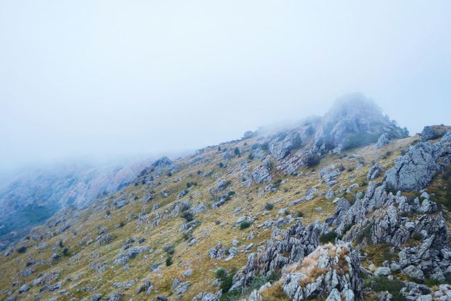 Light blue Tranquil Scene Tranquility Non-urban Scene Scenics Lake Calm Nature Fog Beauty In Nature Physical Geography Solitude Mountain Remote Countryside Majestic Day Geology Foggy Tourism Abundance Foggy Day Fresh 3 Open Edit EyeEm Best Shots Eye4photography