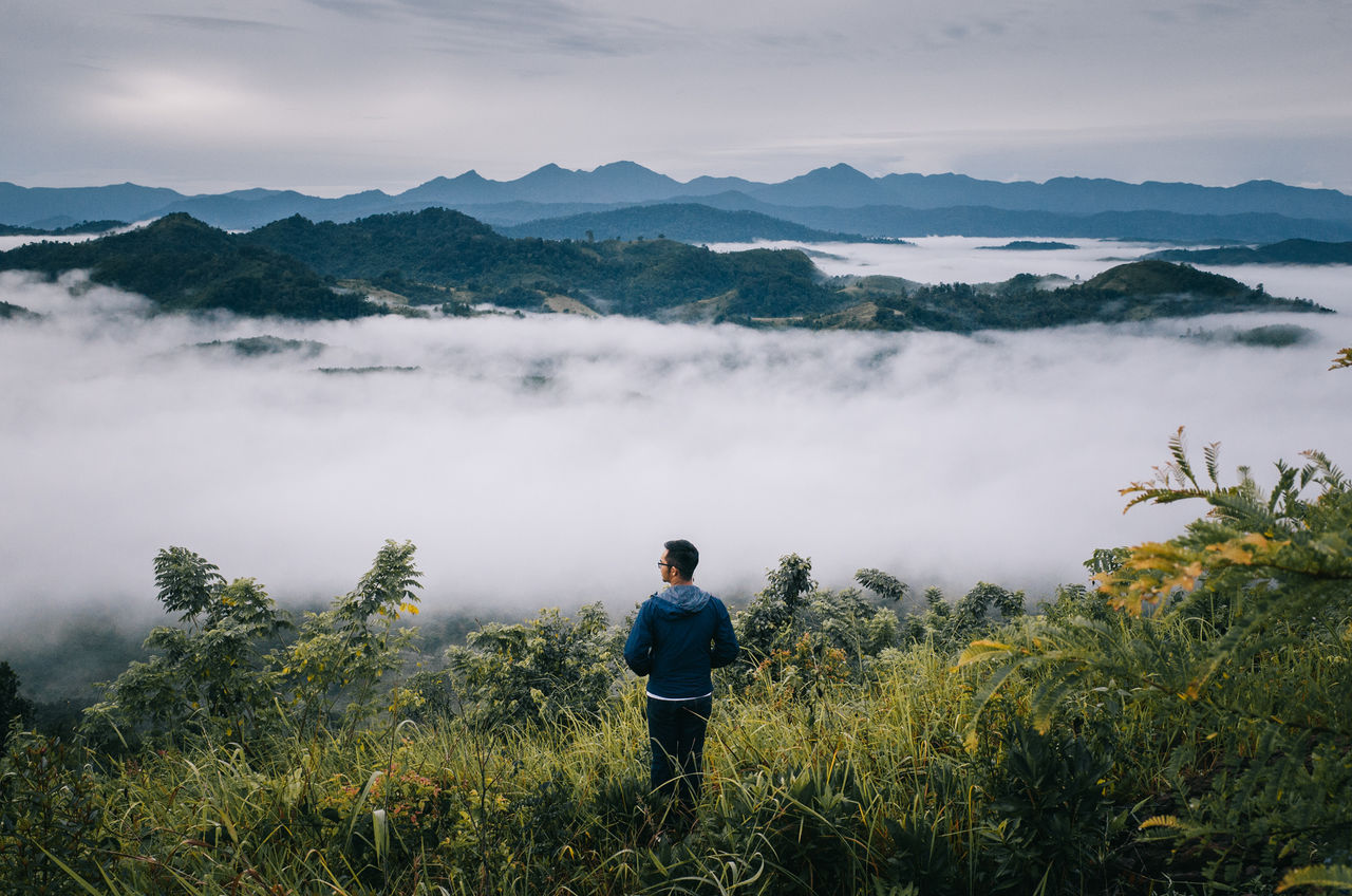 make a peace in the morning Adults Only Adventure Beauty In Nature Day Discovery Fog Grass Hiking Landscape Mountain Mountain Range Nature One Man Only One Person Outdoors Peace People Pine Tree Rear View Sky