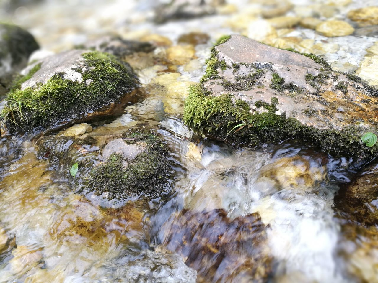 Water Nature Close-up No People Day Outdoors Moss Beauty In Nature The Purist (no Edit, No Filter) The Great Outdoors - 2017 EyeEm Awards Waterfall Tranquility River Beauty In Nature Clean River Underwater Rock - Object Nature Scenics Fast River
