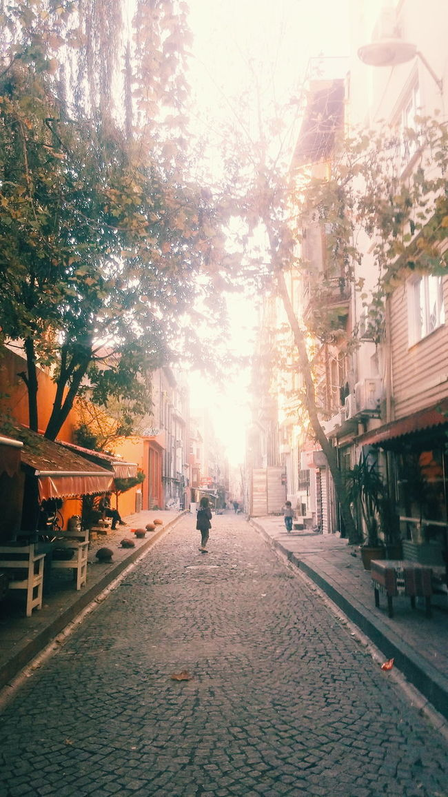 Kids Trees Streetphotography Vscoistanbul