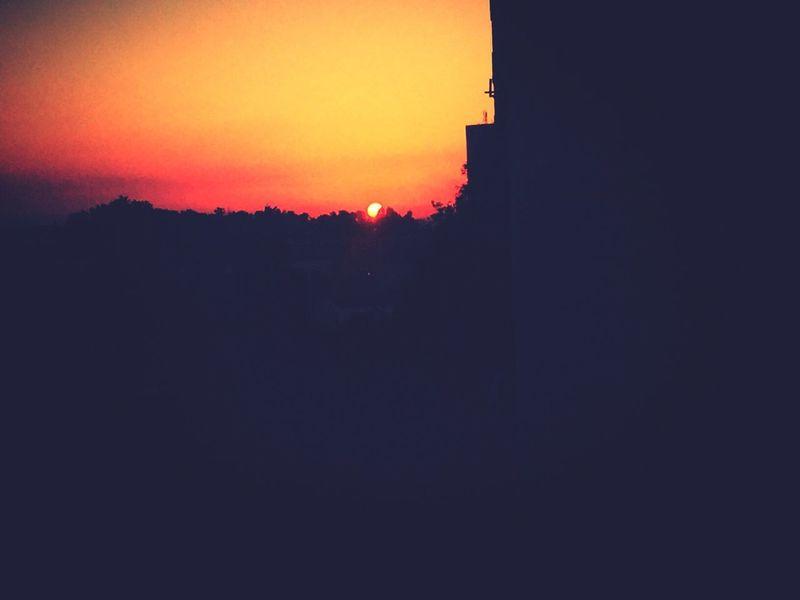 Pris dans le bon moment Sunlight