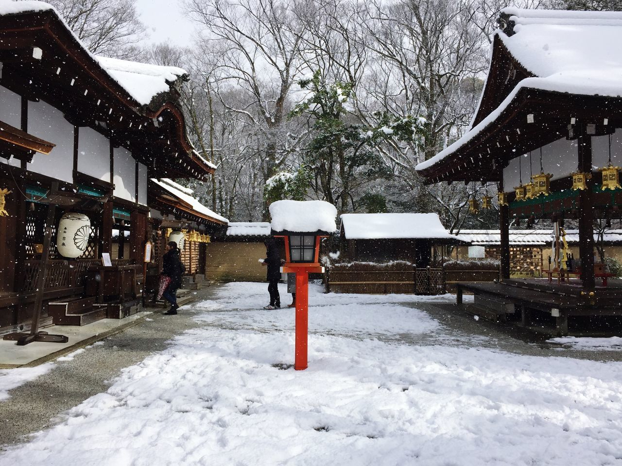 河合神社 Snow Winter Cold Temperature Weather Tree Outdoors Built Structure Architecture Nature Building Exterior Day Snowing No People Snowing ❄ Snow ❄ Sky Tree Winter Nature Snowing Day