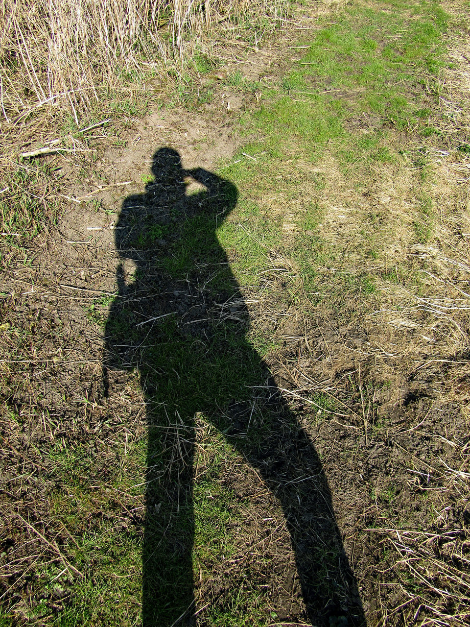 field, grass, real people, shadow, day, outdoors, standing, one person, nature, people