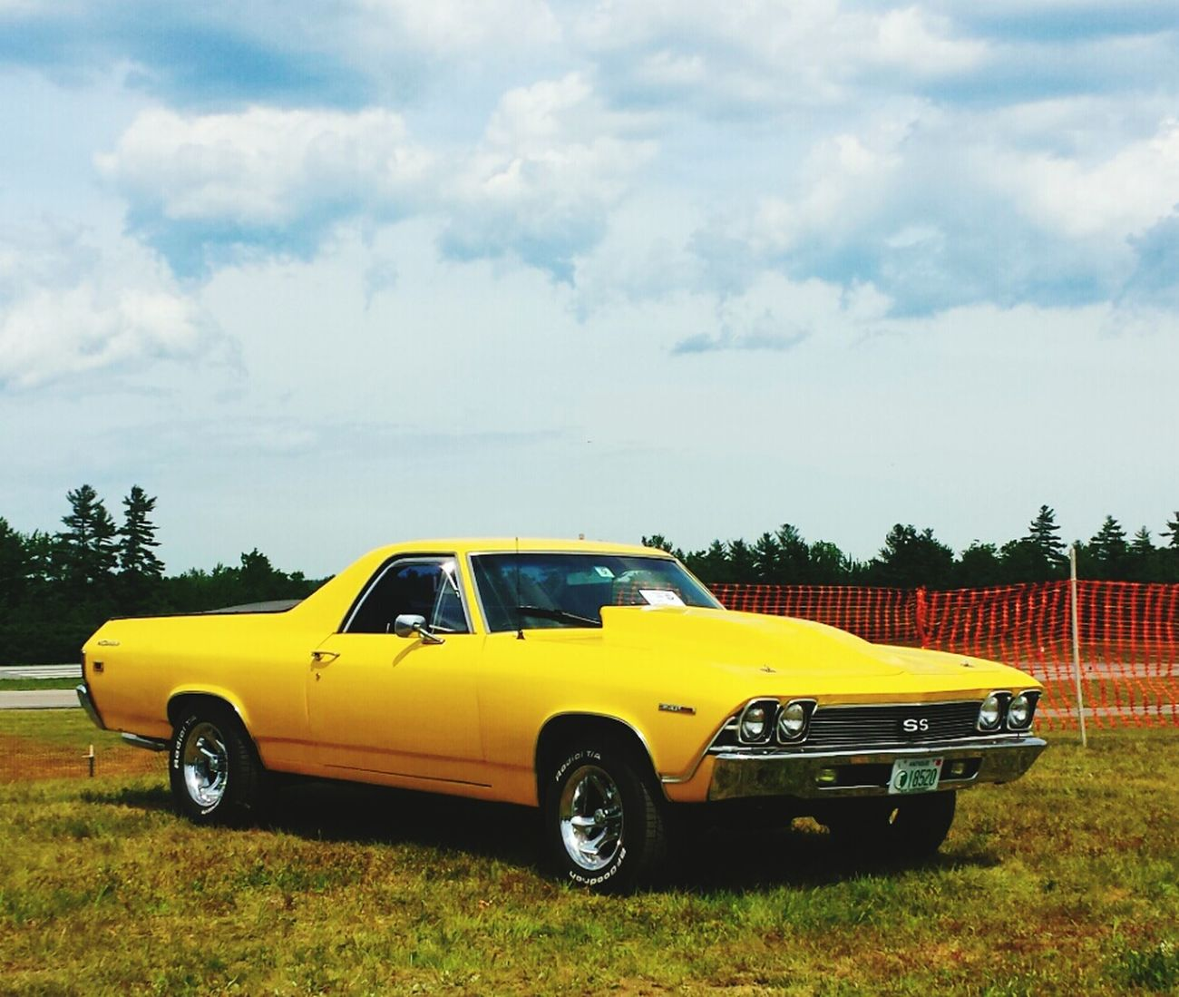 What a beauty El Camino