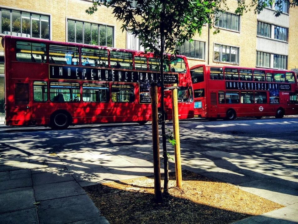 Bright sunny day and london blues. Red Londonbus Redbus City Outdoors Day
