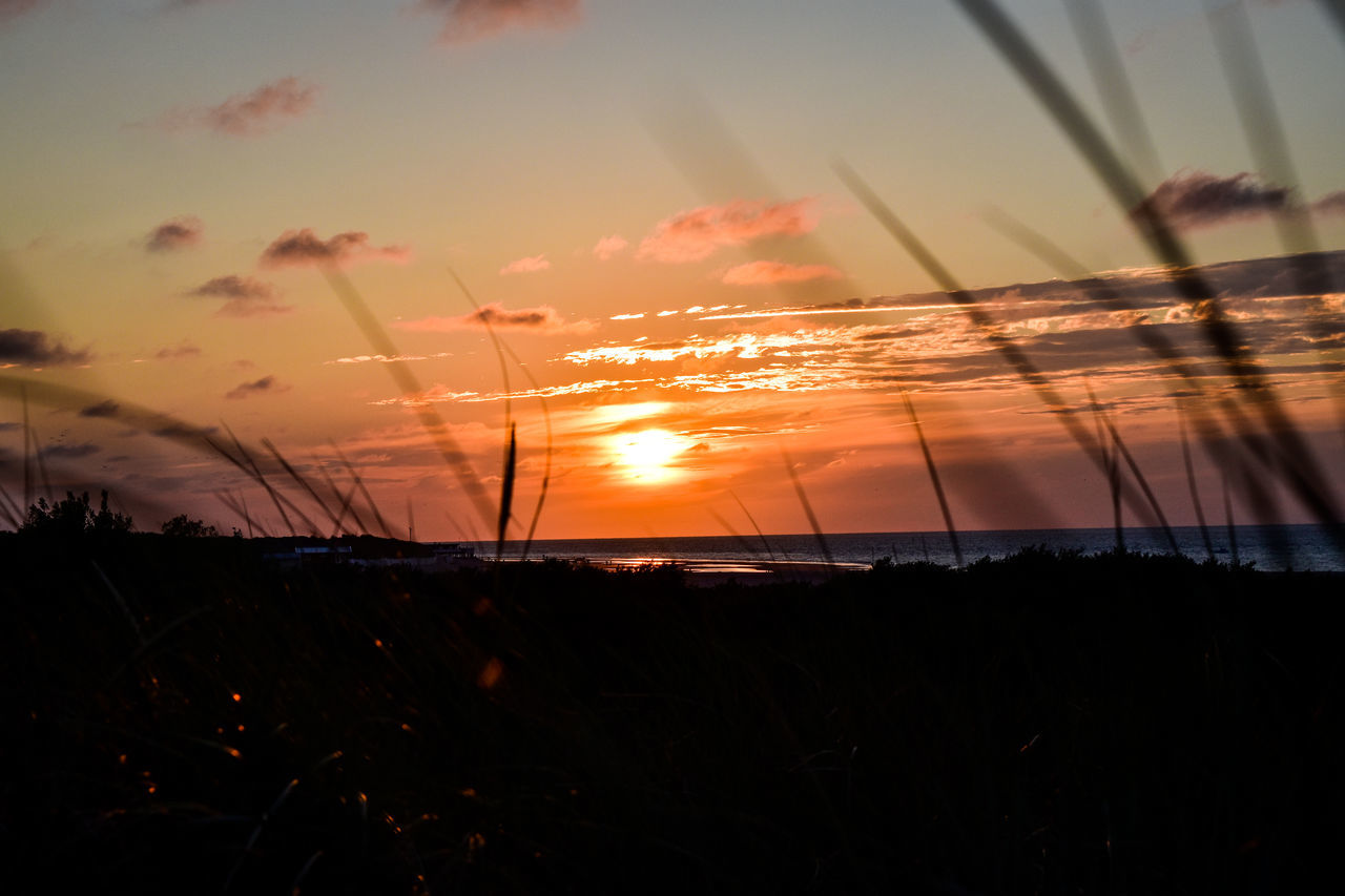 #nature_collection #EyeEmNaturelover #nature #NoFilter #sunset #sun #clouds #skylovers #skyporn #sky #beautiful #sunset #clouds And Sky #beach #sun _collection #sunst And Clouds #sunsetseason In The Grass #nature Plant Sea Water Sommergefühle Breathing Space
