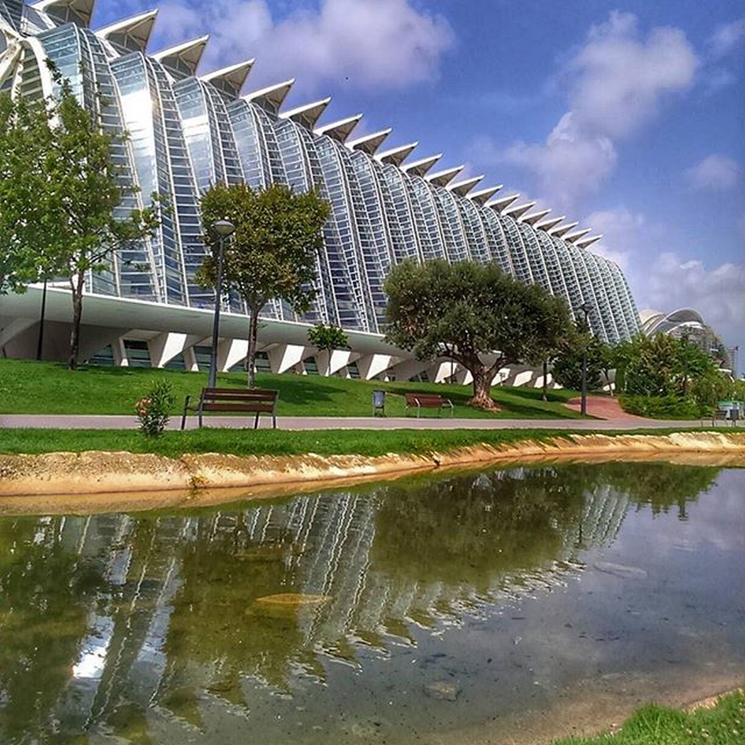 water, architecture, built structure, reflection, tree, building exterior, sky, grass, pond, fountain, cloud - sky, green color, park - man made space, waterfront, incidental people, nature, day, growth, cloud, outdoors
