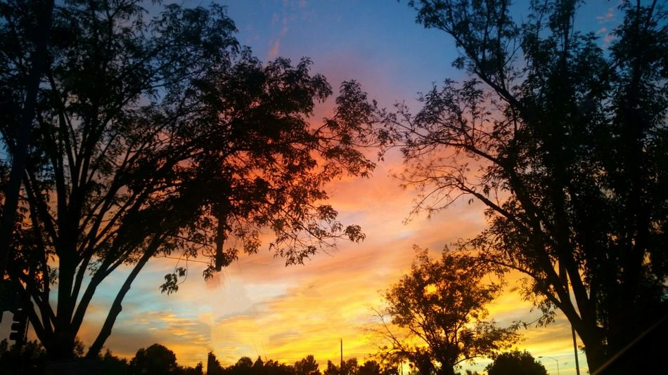 Check This Out Enjoying Life Beautiful Nature Natural Beauty Sunset Sun_collection Sky And Clouds Sky_collection Tree And Sky Missing My Baby  Jeremy Fields