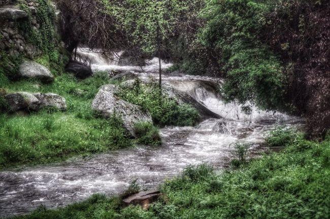 Cuevas De Valle
