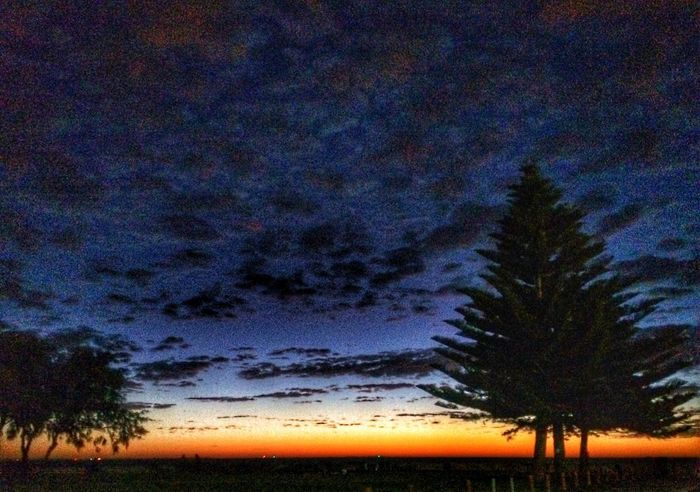 Sunset on South Beach Australia Tree Night Beauty In Nature Scenics Tranquil Scene Star - Space Nature Sky Sunset Silhouette Tranquility EyeEmNewHere