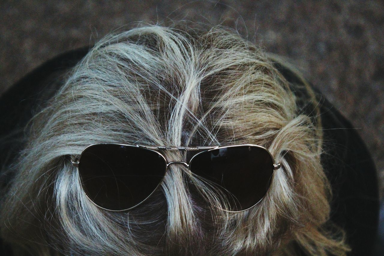 sunglasses, human hair, close-up, focus on foreground, cool, dog, outdoors, day, one person, mammal