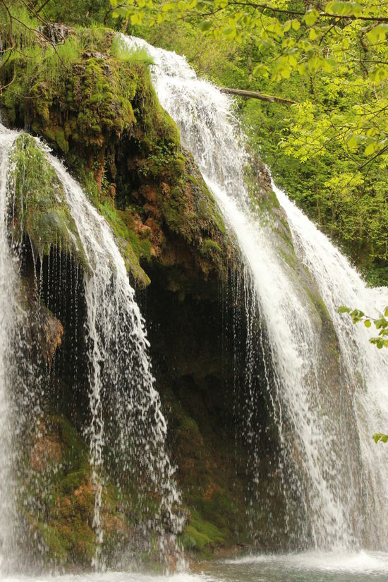 France Arbois Beauty In Nature Flowing Water Forest M_lannoo Outdoors Water Waterfall