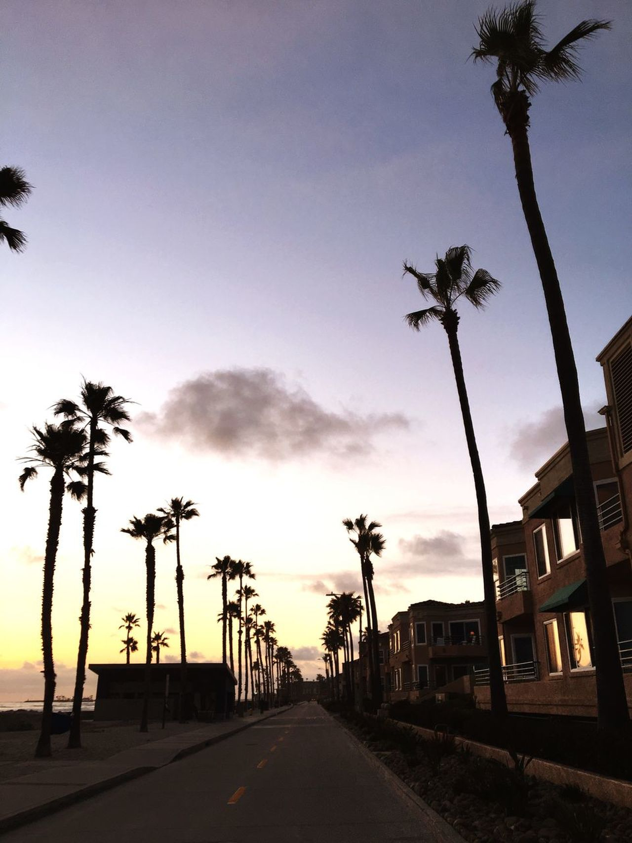 Live For The Story Palm Tree Sunset Summertime At The Beach Built Structure Architecture Summer Fun ☀️ Summer 2017 Showcase: May Best Eyeem Pics First Eyeem Photo Eyeem Market EyeEm Best Shots Enjoying The Sunset Tranquil Scene Beach