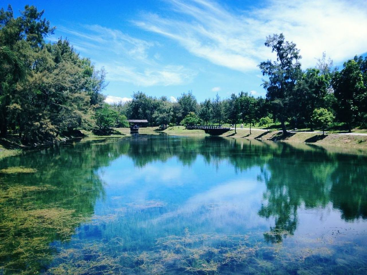 lake Beauty In Nature Cloud - Sky Day Green Color Growth Idyllic Lake Landscape Nature No People Outdoors Reflection Scenics Sky Tranquil Scene Tranquility Tree Water