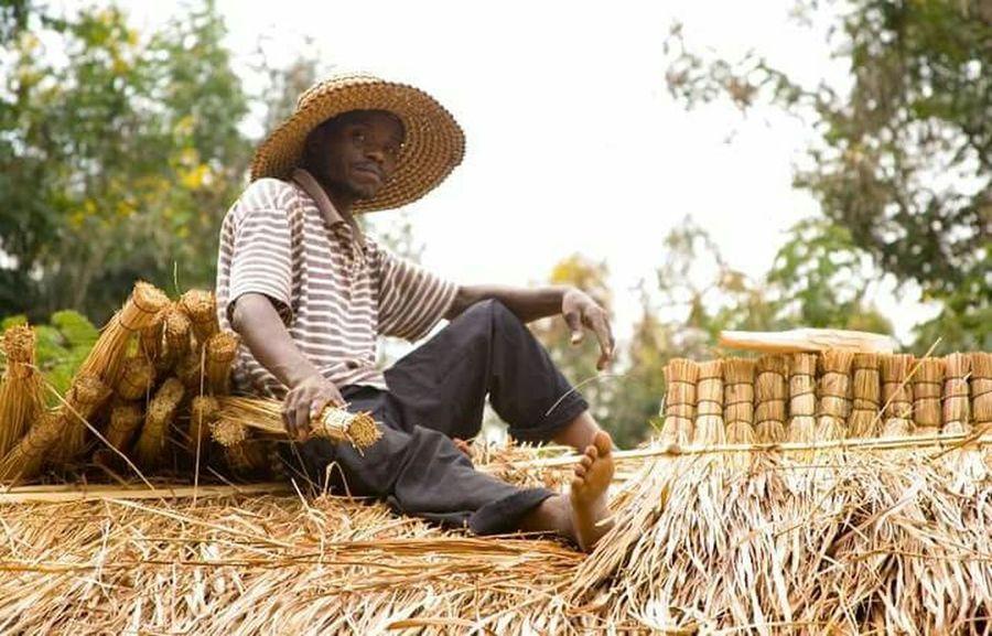 Uganda  Ugandan Photographer Ugandan Thatcher Thatching Roof Top Roof Repair Straw Roof People And Places