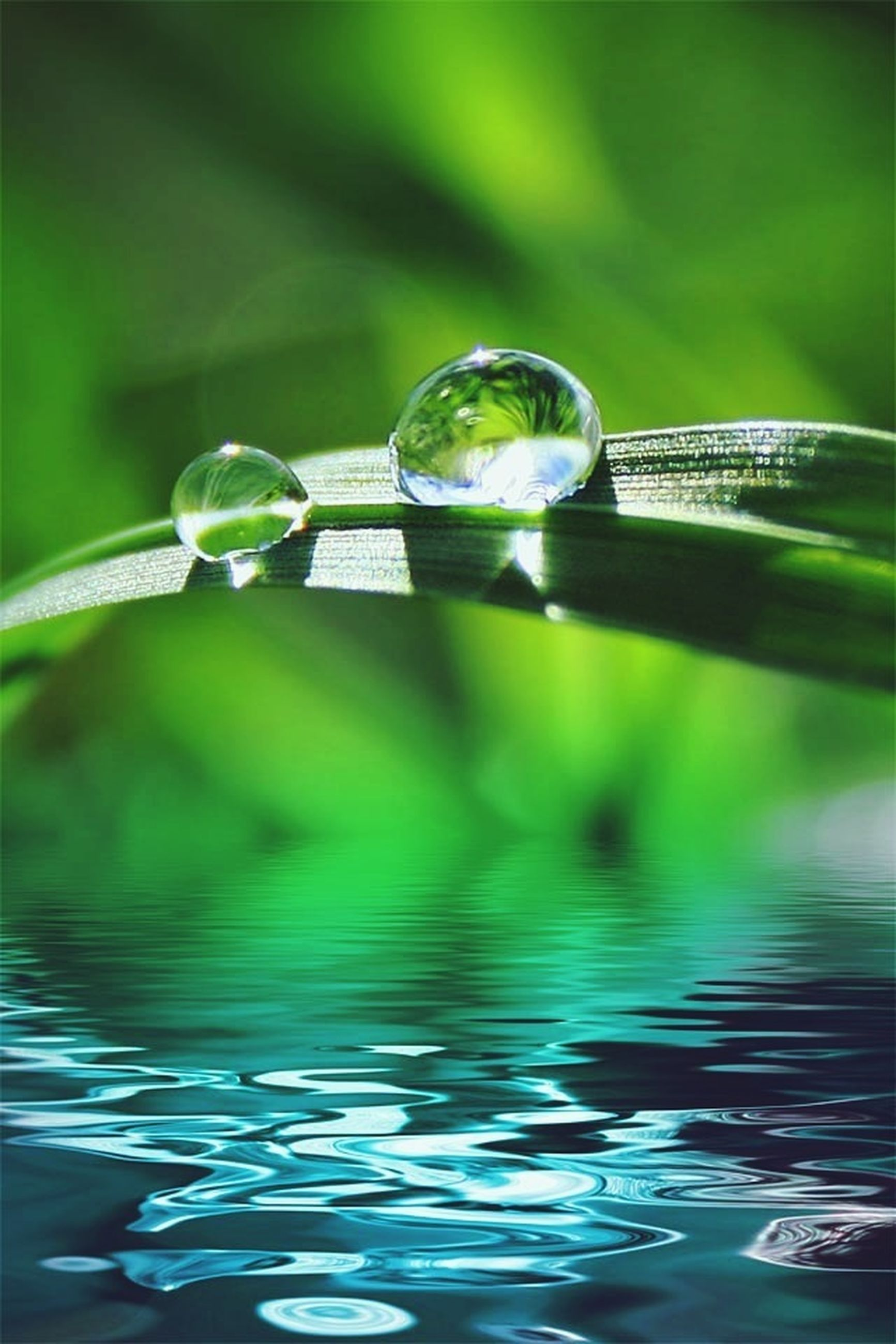 water, drop, close-up, freshness, reflection, focus on foreground, transparent, refreshment, fragility, purity, bubble, green color, selective focus, waterfront, wet, nature, liquid, motion, drink, drinking glass