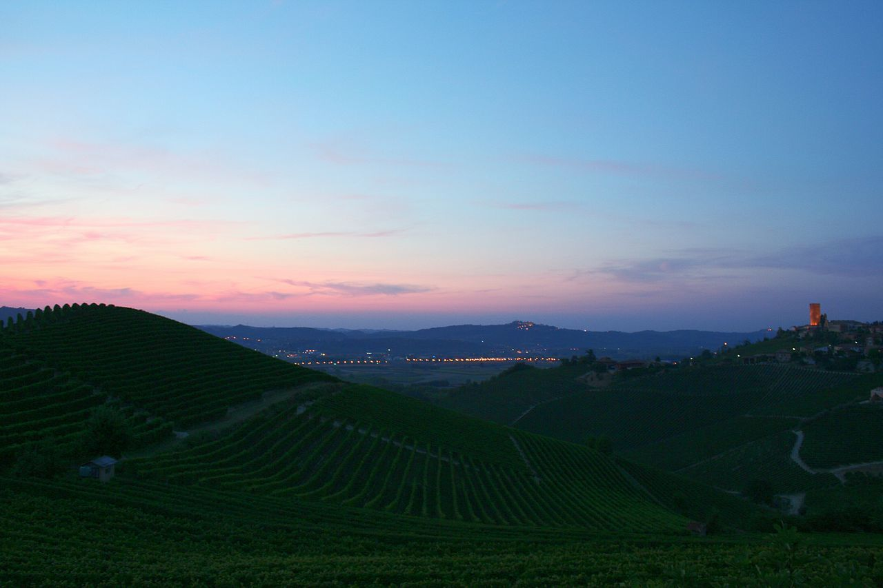 Sunset Landscape Sunset Over Hills Real Colors Sunset Enchanting Place Travel Destinations Tranquility Wonderful Moment Scenics Romantic Sky Pink Sunset Dramatic Sky Langhe Piedmont City Lights Barbaresco Tower Barbaresco Vineyards EyeEmNewHere