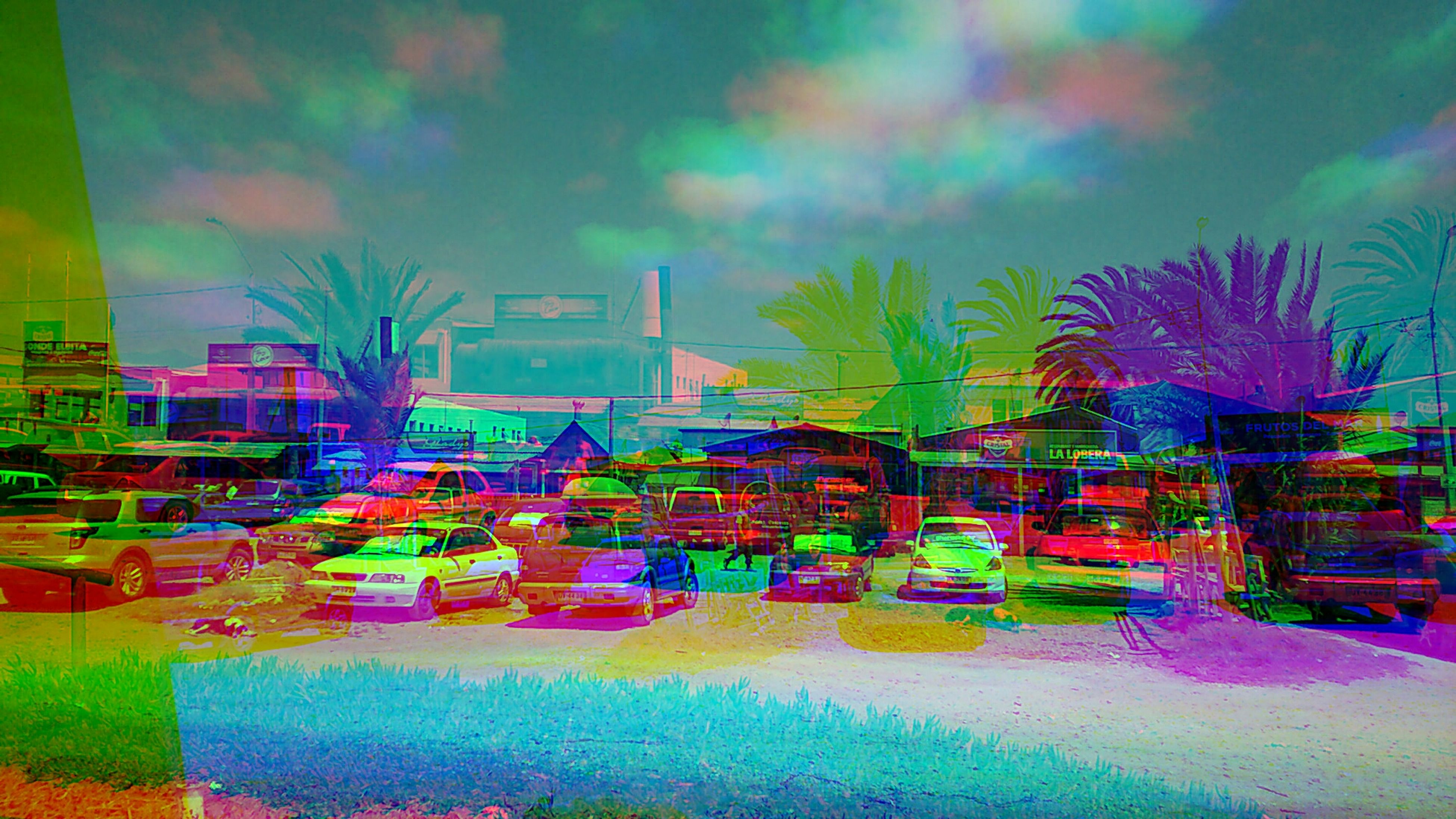 multi colored, creativity, sky, art and craft, art, graffiti, colorful, built structure, palm tree, beach, tree, architecture, outdoors, cloud - sky, building exterior, no people, water, sea, text, day