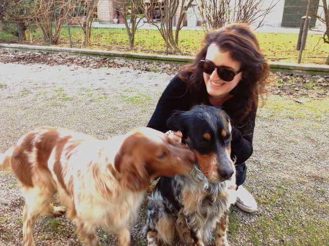 Playing With The Animals I Love My Dog Dog English Setter Setter
