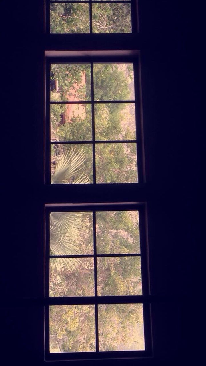 window, indoors, no people, day, tree, architecture, close-up