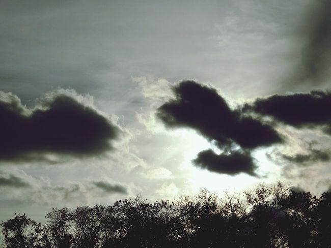 Sky Mainly Cloudy Gray небо пасмурно Природа серый