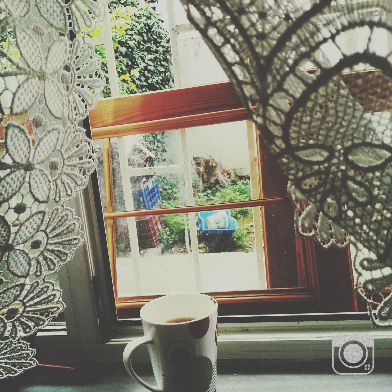 Dünya seni haketmiyor pencere önü çiçeğim.