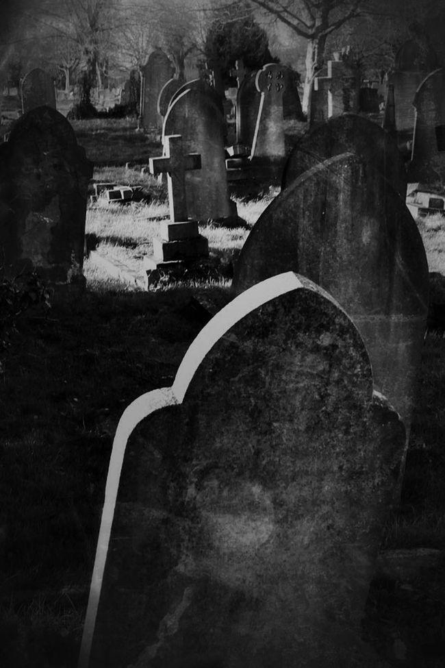 Landscape Black&white Monochrome Graveyard Beauty Cemetery Photography My Unique Style Bw_collection Darkart Dark Photography