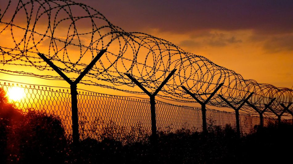 Barbed Wire Barbed Wire Fence Barbedwire Barbedwireporn Beauty In Nature Branch Cloud - Sky Fence Low Angle View Majestic Non-urban Scene Orange Color Outdoors Protection Safety Silhouette Sky Stacheldraht Stacheldrahtzaun Sunset Tranquil Scene Tranquility