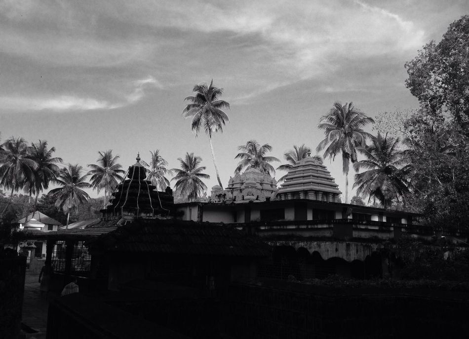 Temple Trees Sky Blackandwhite Black And White Black & White Blackandwhite Photography Black And White Photography IPhoneography Iphoneonly IPhone Iphonephotography Iphonesia IPhone Photography IPhone4s IPhone 4S Mobilephotography Mobile Photography India