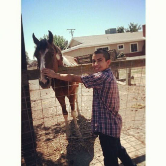 Horse's Are So Unique And Beautiful  Todaywasagoodday Justsmile Enjoyinglife  CouldntAskForMore