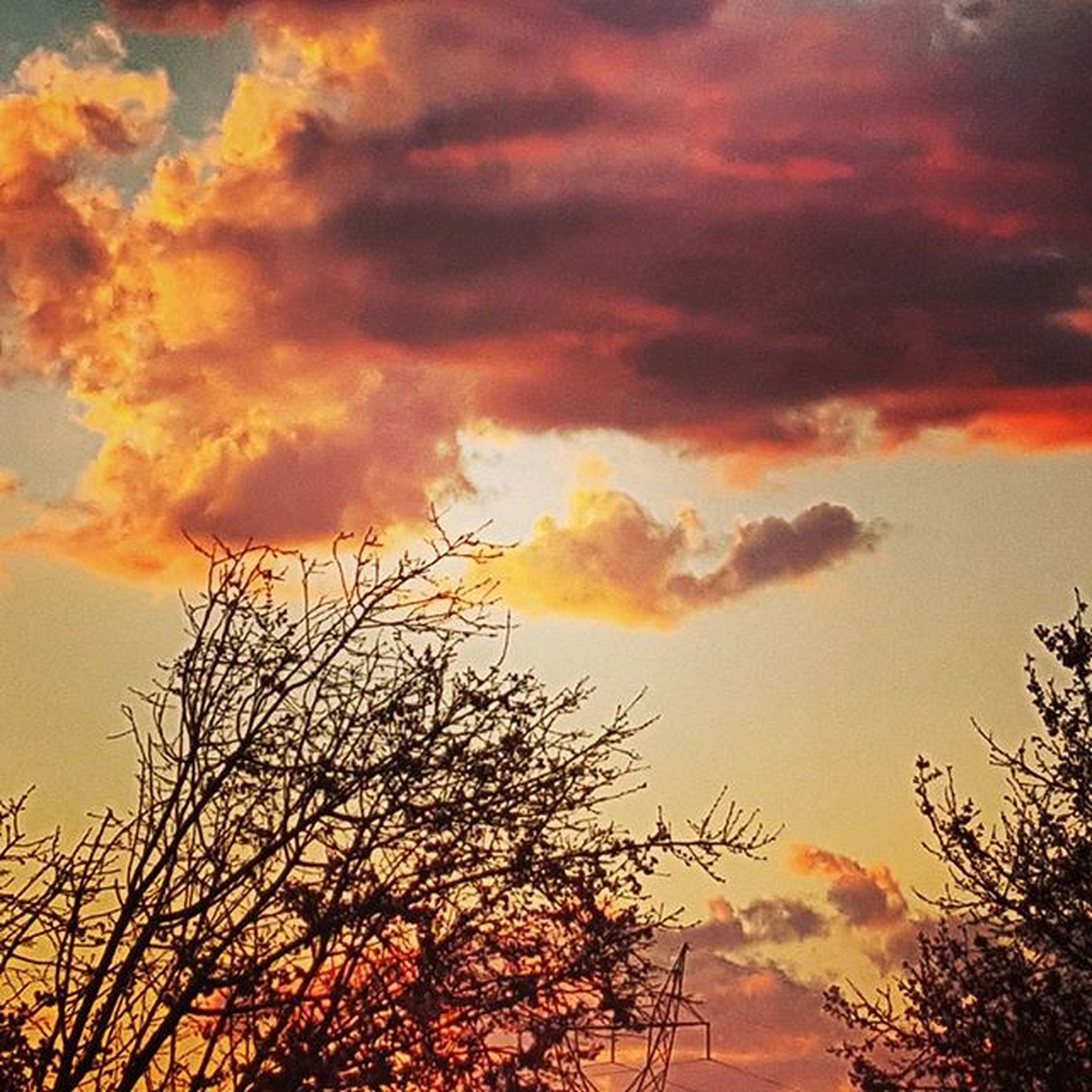sunset, sky, cloud - sky, low angle view, silhouette, orange color, cloudy, beauty in nature, dramatic sky, tranquility, scenics, nature, tree, cloud, tranquil scene, overcast, weather, atmospheric mood, idyllic, growth