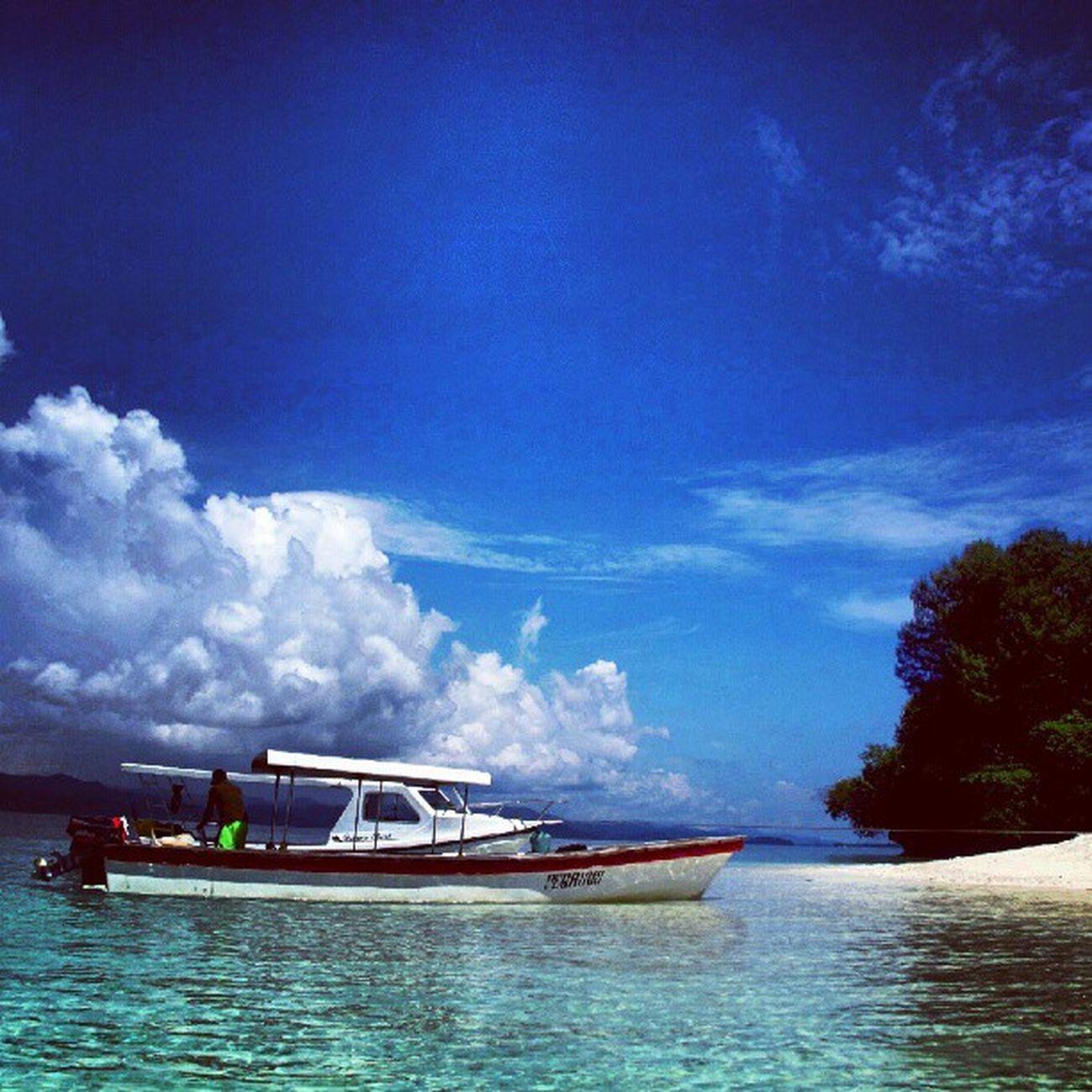 Diving Divetrip Liquiddive Rajaampat island beach sea indonesia instadonesia instanusantara instagram instacool traveling underwater photography doubletap followme