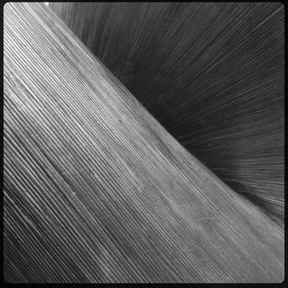 abstract at Ludwig im Museum Abstract No Flash Rock BW-11 Film